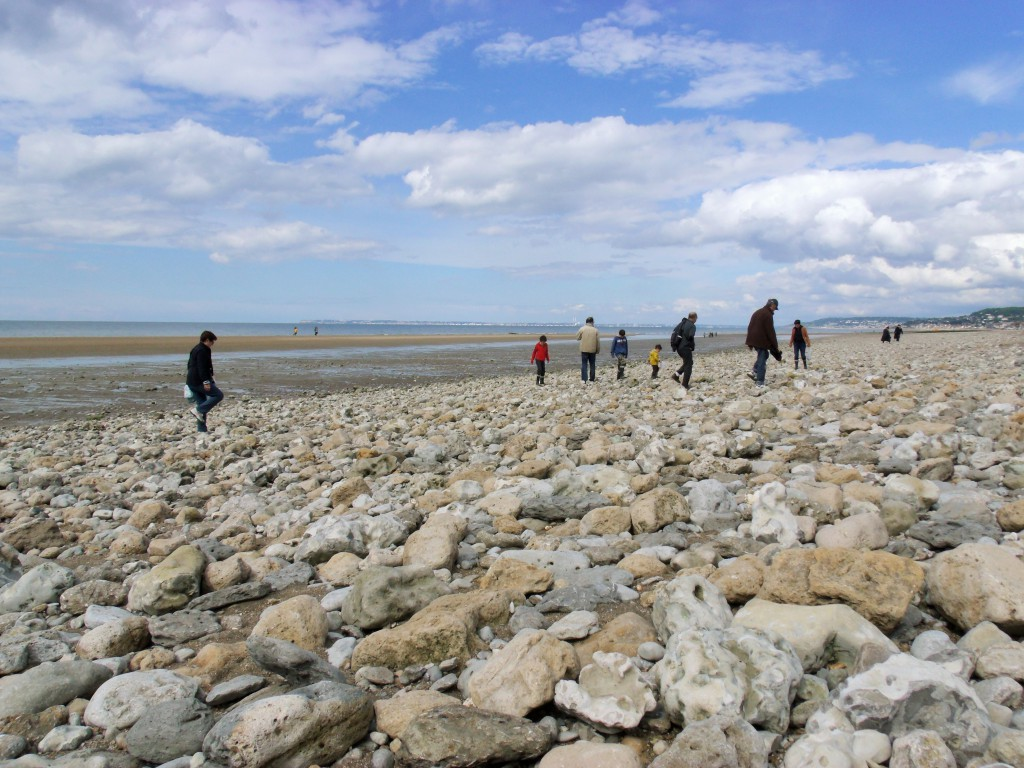 Match! Fossil hunters on the beach at Villers-sur-Mer