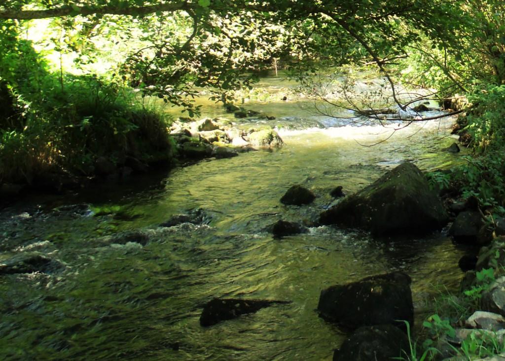 Vallée de la Vère river