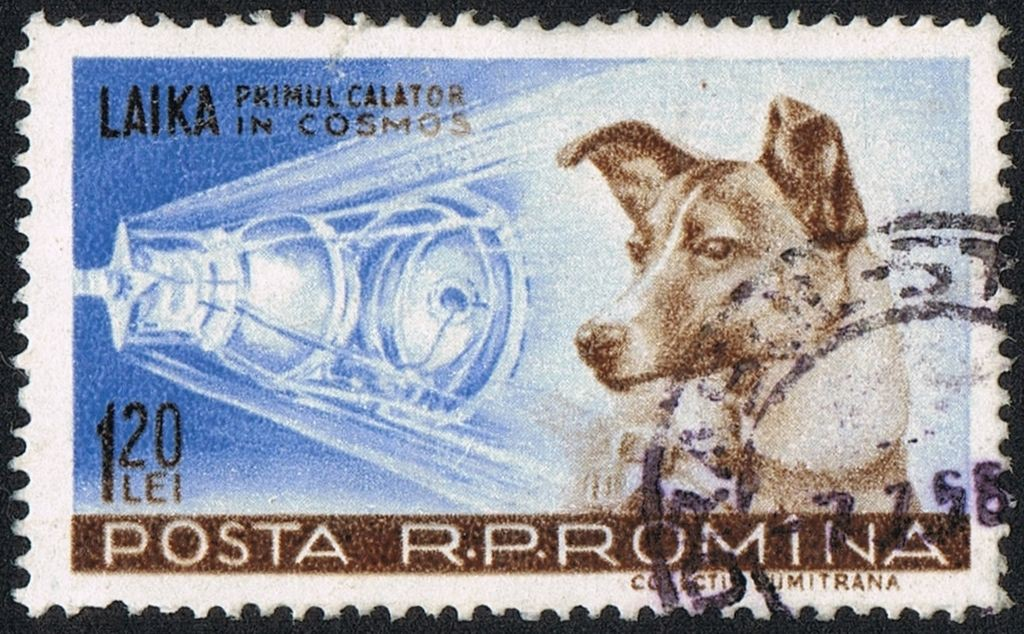 """Romanian stamp from 1959 with Laika the caption reads """"Laika, first traveller into Cosmos"""""""