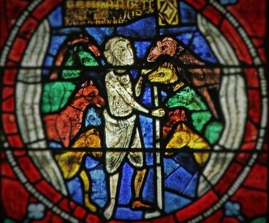 The herd keep Sever warm. Window in the Abbey Saint-Sever Calvados (not the hermitage)