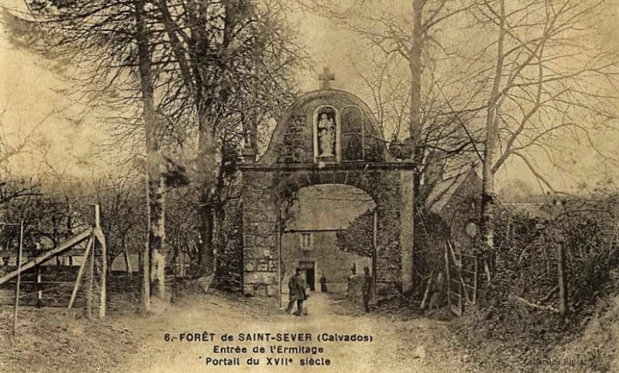 Finding Eden, in the forest of Saint-Sever Calvados