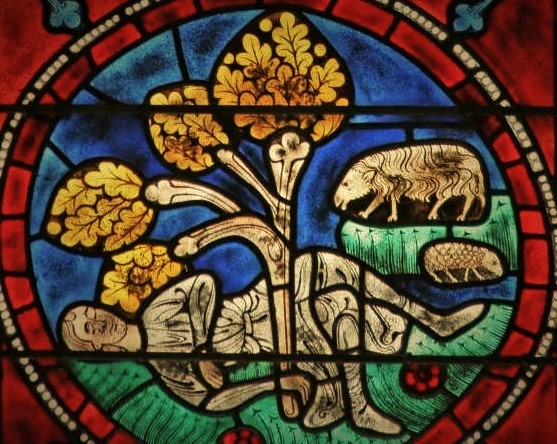 Sever and a surprising Oak. Window in the Abbey Saint-Sever Calvados (not the hermitage)
