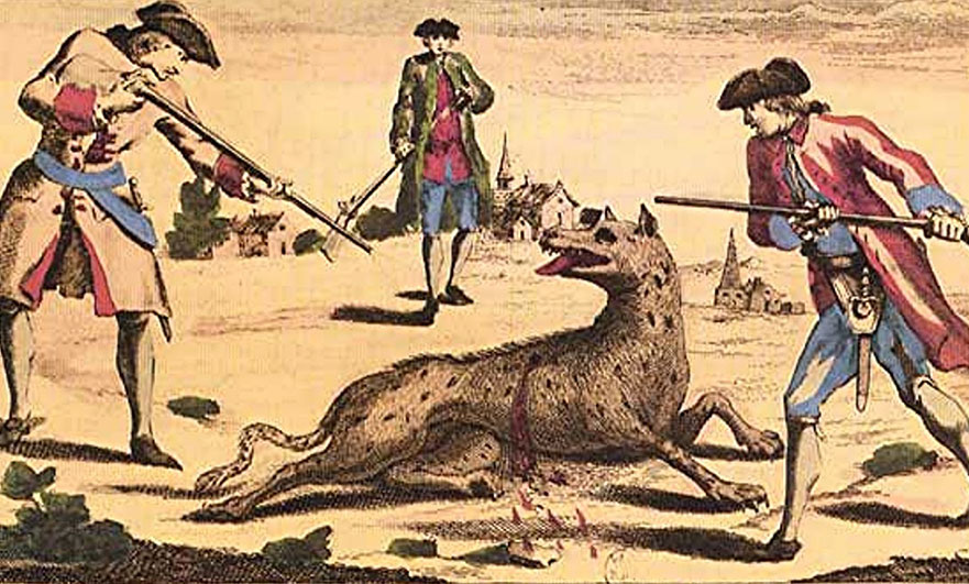 wolf-under-attack-france-coloured-engraving