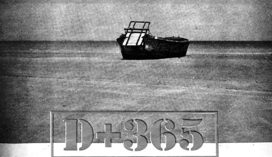 D-plus-365