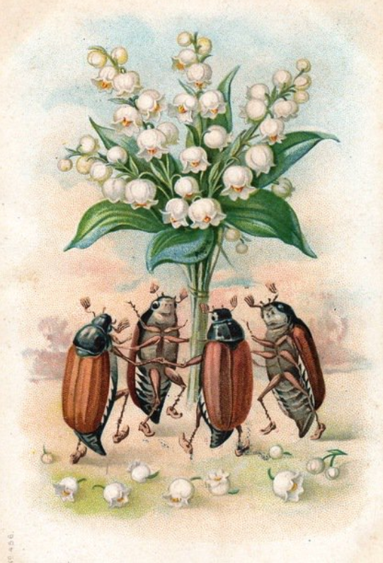 Lily of the Valley and May Bugs for 1st May.