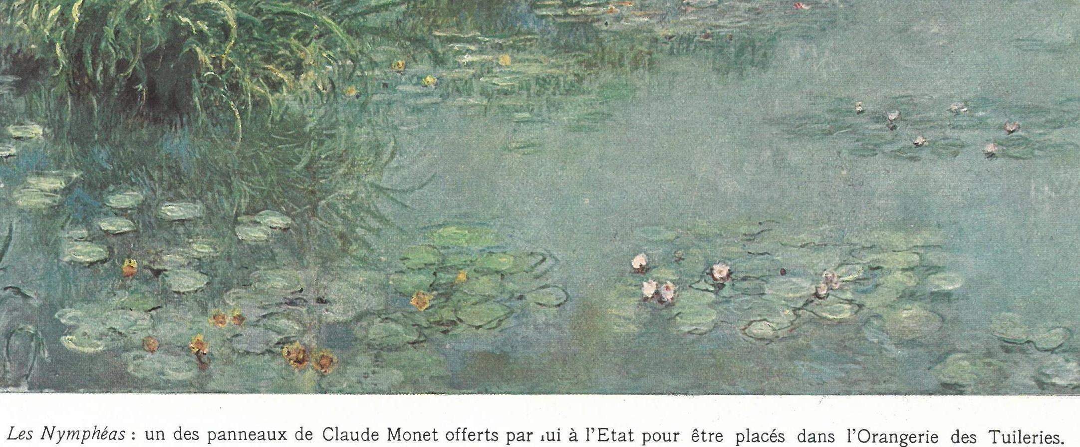 Photo of Monet's waterlily painting