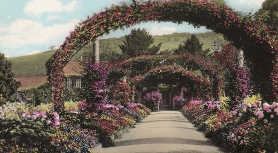 Tinted photograph of Monets garden at the beginning of the 20th century